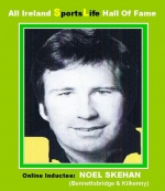 Noel Skehan: 9 All Ireland Senior Hurling Medals