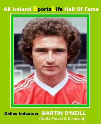 Martin O'Neill - 2014 Republic Of Ireland Soccer Manager