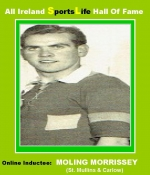One Of Carlow's Greatest Ever Hurlers