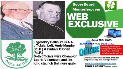 Ballinure G.A.A. Club Cork